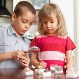 Les enfants considèrent des pierres d'une loupe Images stock
