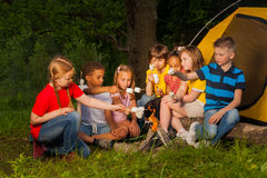 Les enfants divers avec la guimauve traitent près du feu Photos libres de droits
