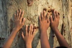 Les enfants embrassent l'arbre comme symbole de l'amour pour la forêt Images stock