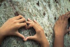 Les enfants embrassent l'arbre comme symbole de l'amour pour la forêt Image stock