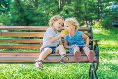 Les enfants en bas âge garçon et fille s'asseyant sur un banc par la mer et mangent une pomme Images libres de droits