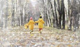 Les enfants en bas âge sur une promenade pendant l'automne se garent Premier gel et le premier images libres de droits