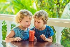 Les enfants garçon et fille boivent le smoothie orange de la papaye photos libres de droits