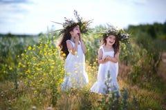 Les enfants ont l'amusement dans le domaine Photographie stock