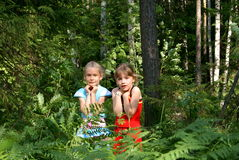 Les enfants ont peur en bois Photo libre de droits