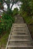 Les escaliers Images stock