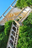 Les escaliers d'Alcatraz Images libres de droits
