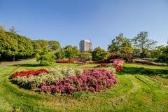 Les escaliers font du jardinage avec les cascades et la colline de roses dans le jardin Oberlaa de station thermale à Vienne, Aut photo libre de droits