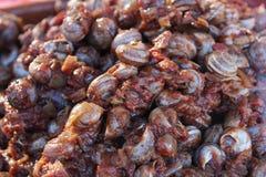 Les escargots avec de la sauce épicée à tomate à vendre à un marché calent image libre de droits