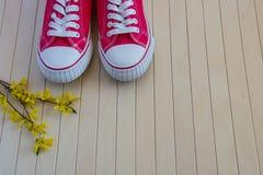Les espadrilles rouges avec le ressort jaunissent des fleurs sur le fond en bois Images stock