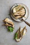Les esprots ou les sardines peuvent dedans et des sandwichs Images stock