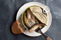 Les esprots ou les sardines peuvent dedans et des sandwichs Photo libre de droits