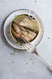 Les esprots ou les sardines peuvent dedans et des sandwichs Images libres de droits