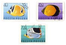 Les estampilles postales - placez avec des poissons Images libres de droits