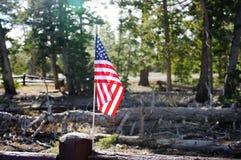 Les Etats-Unis diminuent avec la vue de nature sur le fond Photo libre de droits