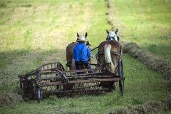 LES Etats-Unis - L'Ohio - Amish Photos libres de droits