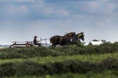 LES Etats-Unis - L'Ohio - Amish Image libre de droits