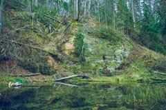 Les falaises de grès sur la rivière étayent en parc national de Gaujas, Image stock