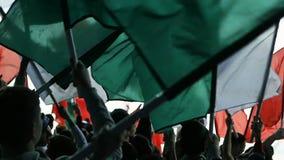 Les fans de sports de vue de postérieur ondulent des drapeaux sur des places de spectateurs banque de vidéos