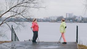 Les femmes agées en automne garent faire l'échauffement avant la marche nordique Photo libre de droits