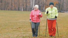 Les femmes agées heureuses en parc d'automne ont le nordic marchant parmi le parc de froid d'automne Photo stock