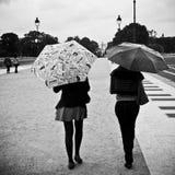 Les femmes avec le parapluie par jour pluvieux dans Tuileries font du jardinage Photographie stock libre de droits