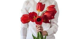 Les femmes d'isolement dans la chemise classique blanche maintient les tulipes rouges dans sa main Images stock