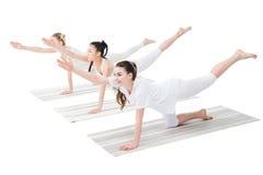 Les femmes de sourire pratiquant le chien de gibier à plumes posent sur des tapis de yoga Photographie stock