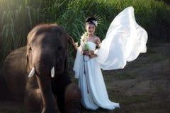 Les femmes et l'événement d'éléphants façonnent le portrait de concept dans le tradit Image stock