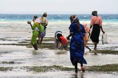 Les femmes et les enfants à Zanzibar Image libre de droits