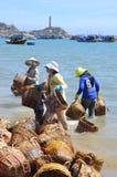 Les femmes locales nettoient leurs paniers qui ont été employés pour transporter des poissons du bateau au camion Photo libre de droits