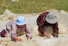 Les femmes mongoles supérieures produisent le feutre dans Harhorin, Mongolie photo libre de droits