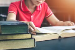 Les femmes ont lu des livres de vacances dans un environnement tranquille image stock