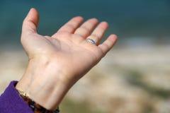 Les femmes remettent et mer bleue Images libres de droits