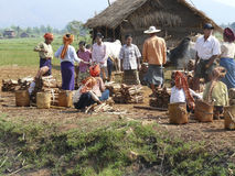 Les femmes vendent le bois de chauffage au marché d'île au lac Inle Photos libres de droits