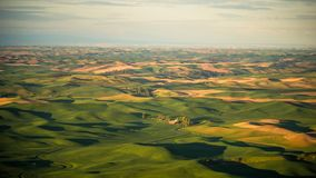 Les fermes pointillent le Palouse de la butte de Steptoe au lever de soleil image libre de droits