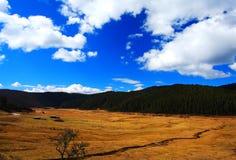 Les fermes sur le plateau du Qinghai Thibet en hiver assaisonnent images libres de droits