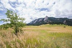 Les fers à repasser près de Boulder, le Colorado photo libre de droits