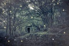 Les fées logent dans le bois Photo libre de droits