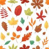 Les feuilles automnales de vecteur de feuille d'automne tombant des arbres tombés ont poussé des feuilles illustration de chêne e Image libre de droits