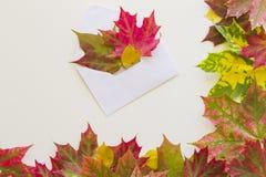 Les feuilles d'automne colorées encadrent et ouvert enveloppez sur le fond blanc Fin vers le haut photos stock