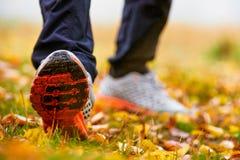 Les feuilles d'automne et équipe des espadrilles Images stock