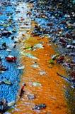 Les feuilles d'automne sur le trottoir dans le singleton se garent avec la tache de brun de rouille Photo stock