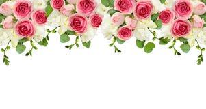 Les feuilles d'eucalyptus, le freesia et la rose de rose fleurit dans une frontière supérieure illustration de vecteur
