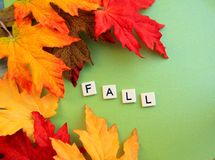 Les feuilles de chute entourent l'automne de mot Photographie stock libre de droits