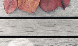 Les feuilles de couleur et le plancher en bois Image libre de droits