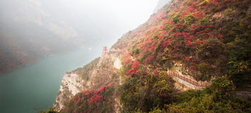 Les feuilles de Three Gorges Photos libres de droits
