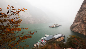 Les feuilles de Three Gorges Photos stock