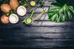Les feuilles de vert de Monstera plantent l'élevage dans sauvage, l'usine tropicale de forêt sur le fond noir Coctail de chaux av Image stock