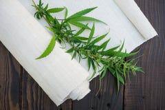 Les feuilles du tissu de cannabis et de chanvre roulent sur le surfac en bois foncé Images libres de droits